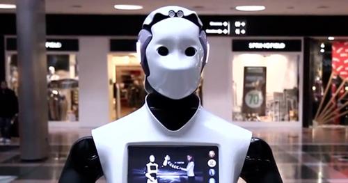 Image result for PAL REEM robot
