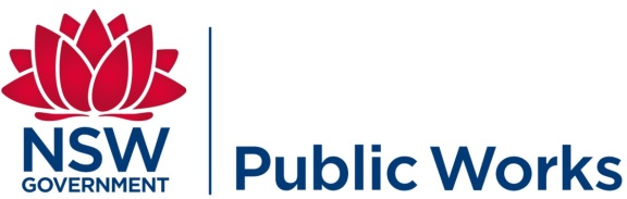 16934nsw_public_works_final